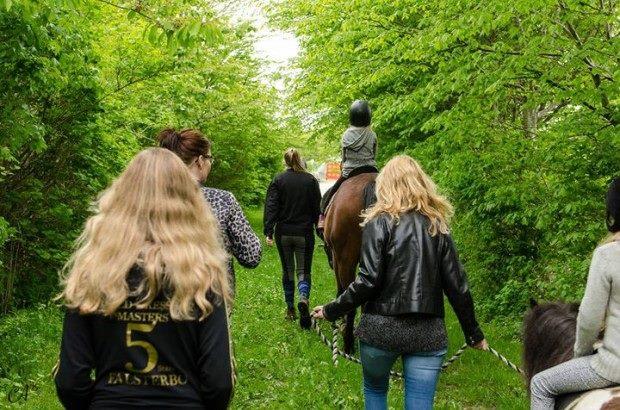 nogle mennesker på tur, en hest og en pony