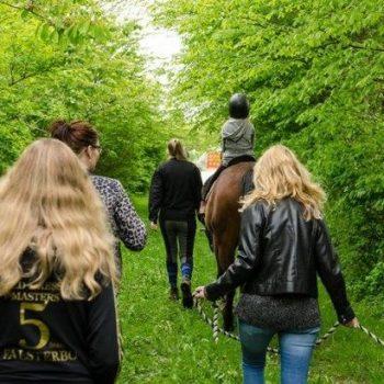 hestebillede